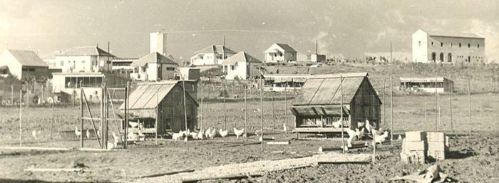 הסטוריה כפר שמריהו